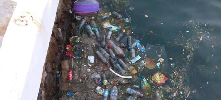 Σκουπίδια στο λιμάνι του Αγίου Νικολάου/ Φωτογραφία cretapost.gr