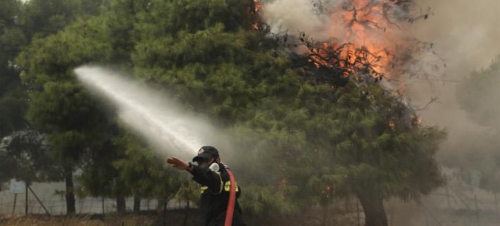 Δυο  PZL κάνουν ρίψεις νερού, φωτογραφία: intimenews ΛΙΑΚΟΣ ΓΙΑΝΝΗΣ