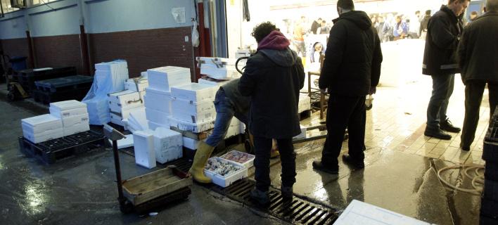 Δέσμευσαν 64 κιβώτια με ακατάλληλα ψάρια στο λιμάνι του Πειραιά