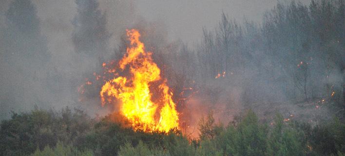 Αγρίνιο: Δύσκολη νύχτα στον Ταξιάρχη Θέρμου, σκληρή μάχη με τις φλόγες