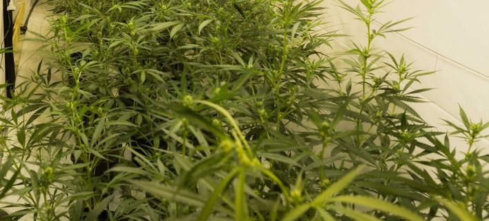 Βρήκαν 148 συσκευασίες ναρκωτικών, φωτογραφία: ΕΛΑΣ