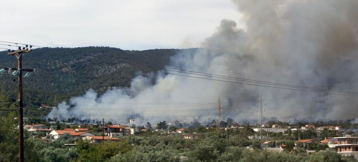 ag_t708_0 Ένας νεκρός και δύο τραυματίες από μεγάλη πυρκαγιά στους Αγίους Θεοδώρους [εικόνες - βίντεο]