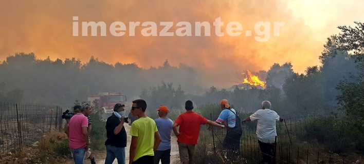 ΦΩΤΟΓΡΑΦΙΑ: imerazante.gr