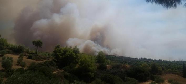 Μεγάλη πυρκαγιά στο Αγρίνιο [βίντεο]