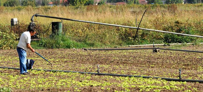 Ετοιμα τα ραβασάκια -95.000 αγρότες θα επιστρέψουν 215 εκατ. ευρώ από παράνομες επιδοτήσεις
