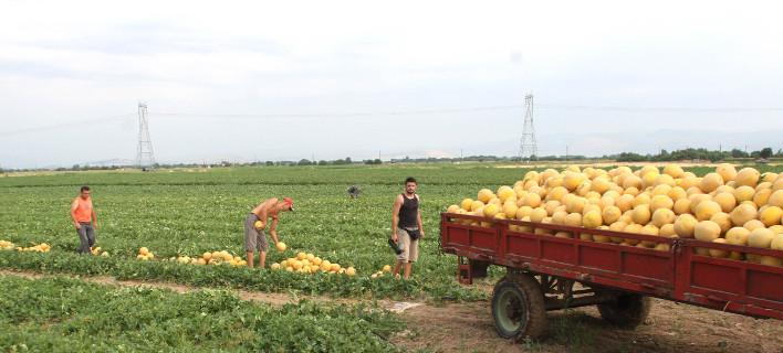 Τα 12 δισ. ευρώ θα είναι για άμεσες ενισχύσεις αγροτών/Φωτογραφία: Eurokinissi