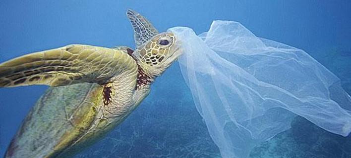 Το πρώτο ελληνικό νησί που καταργεί εντελώς την πλαστική σακούλα [εικόνες]