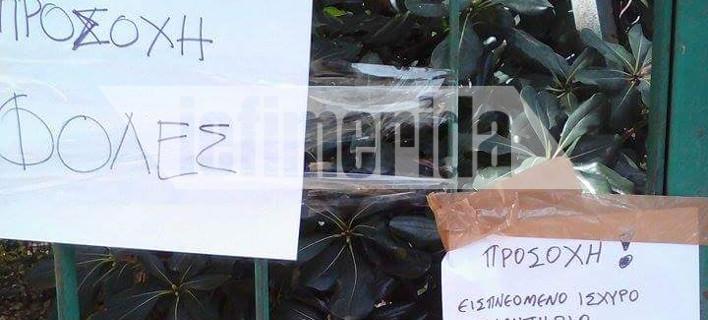 Διεστραμμένα μυαλά: Εβαλαν εισπνεόμενες φόλες στο Αλσος Παγκρατίου