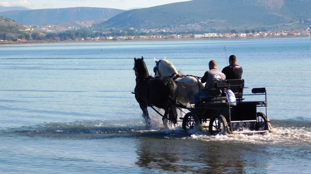 Βόλτα με άμαξα στην παραλία Ν. Κίου στην Αργολίδα / EUROKINISSI