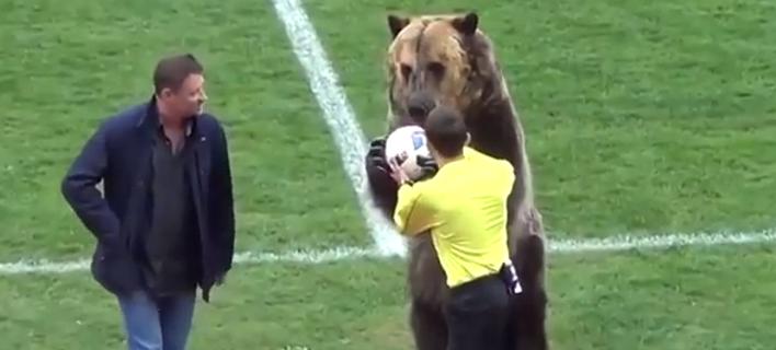 Ρωσία: Εβαλαν αρκούδα να κάνει κόλπα πριν από ποδοσφαιρικό ματς -Ξεσηκώθηκαν οι φιλοζωικές [βίντεο]