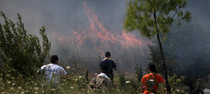 Πυρκαγιά καίει δασική περιοχή στην Αρτα / Φωτογραφία: Menelaos Myrillas / SOOC/ Αρχείο