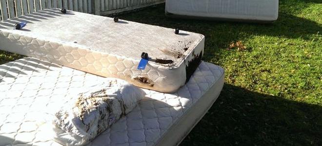 Παραλίγο να καούν ζωντανοί: Ζευγάρι σώθηκε την τελευταία στιγμή όταν κεραυνός χτύπησε το κρεβάτι τους [εικόνες]