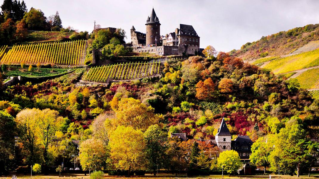 Τα χρώματα του φθινοπώρου στη γερμανική ύπαιθρο με φόντο ένα παλιό κάστρο -Φωτογραφία: AP Photo/Michael Probst
