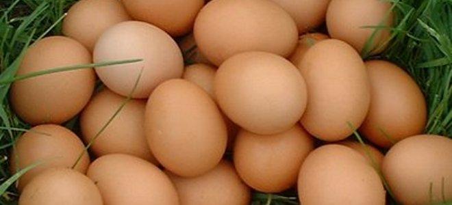 Αυγά που αναπηδούν και προκαλούν... ανδρική στειρότητα!