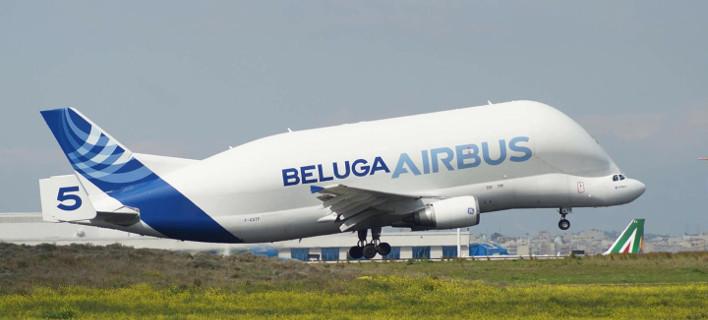 Η... φάλαινα των αιθέρων στο «Ελευθέριος Βενιζέλος» -Το εντυπωσιακό αεροσκάφος Beluga της Airbus [εικόνα]