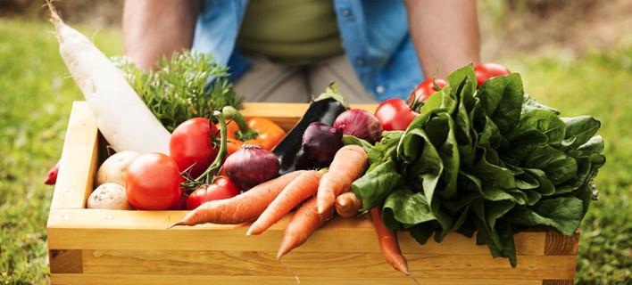 Ερευνα του Ευρωκοινοβουλίου: Πόσο ασφαλή για την υγεία είναι τα βιολογικά προϊόντα