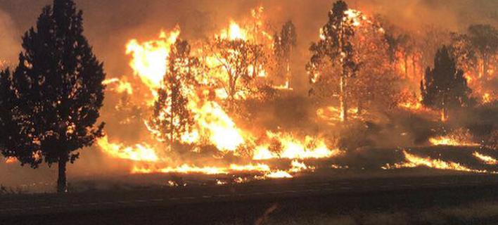 Ανεξέλεγκτη η πυρκαγιά στην Καλιφόρνια- Εκκενώθηκαν σπίτια, ένας νεκρός [εικόνες]