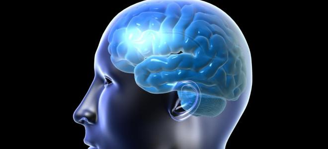 Πέντε συνηθισμένα «λάθη» που κάνει καθημερινά ο εγκέφαλός μας