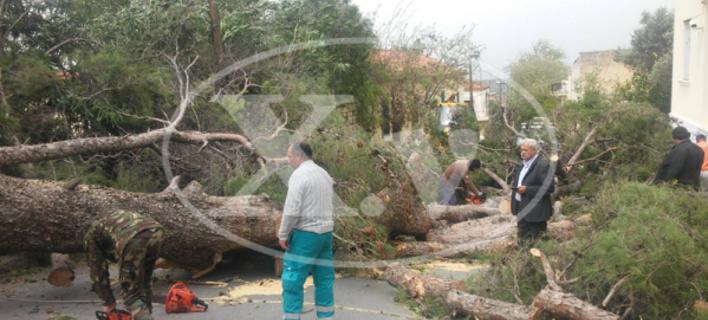 Θυελλώδεις άνεμοι σαρώνουν τα Χανιά -Ενας 64χρονος νεκρός, ένας τραυματίας, έκλεισαν τα σχολεία [εικόνες]