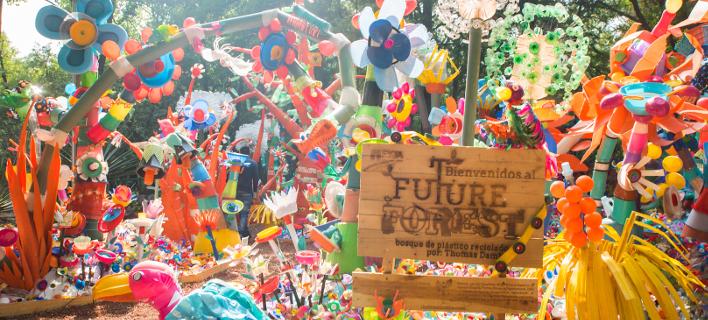 Το πλαστικό δάσος βρίσκεται στο Μεξικό, φωτογραφίες: thomasdambo.com