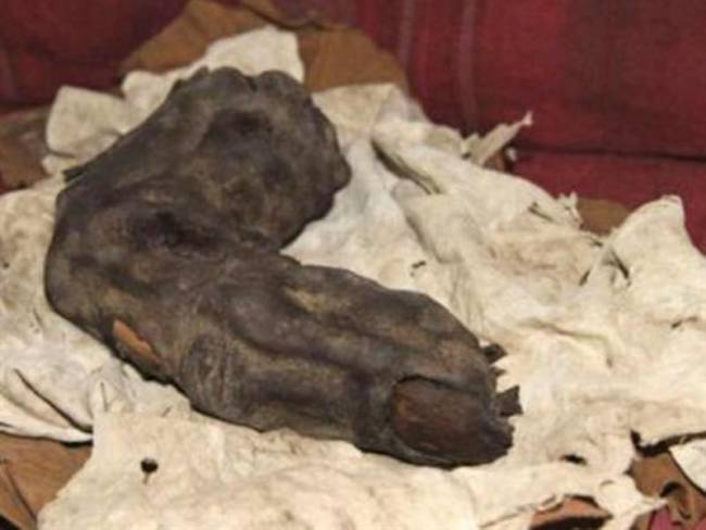 Αρχαιολόγοι ανακάλυψαν γιγαντιαίο δάκτυλο στην Αίγυπτο [εικόνα]