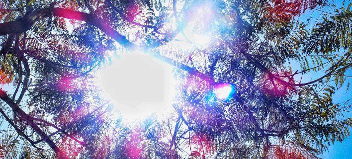 Παραμένει ψηλά η θερμοκρασία/ Φωτογραφία: EUROKINISSI- ΓΙΩΡΓΟΣ ΚΟΝΤΑΡΙΝΗΣ