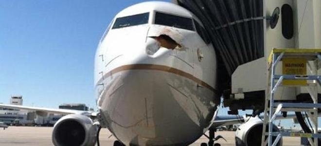 Δες τί ζημιά μπορεί να προκαλέσει σε ένα αεροπλάνο ένα πουλί [εικόνες]