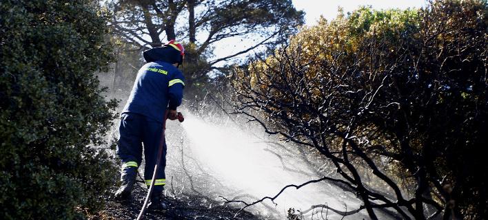 Κρήτη: Φωτιά στην Κνωσό -Ισχυροί άνεμοι πνέουν στο σημείο