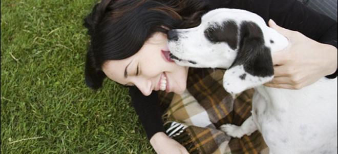 Τα σκυλιά «μυρίζουν» τα συναισθήματα μας, επιβεβαιώνει πρόσφατη έρευνα