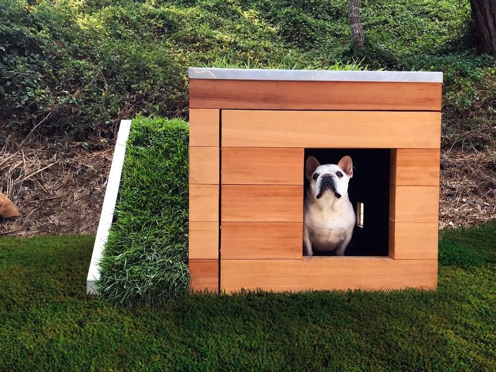 09ef5e2a0d0c Πράσινα» σπίτια για σκύλους -Με γρασίδι και ανεμιστήρα  εικόνες ...