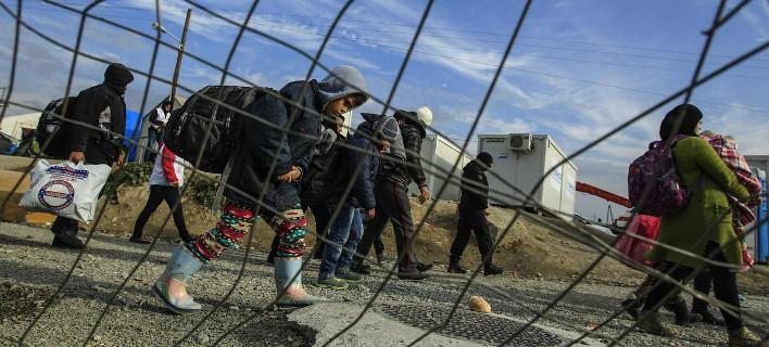 Οι Σκοπιανοί καταδιώκουν τους μετανάστες με λυκόσκυλα -Με ουλές και δαγκωματιές επιστρέφουν στην Ειδομένη