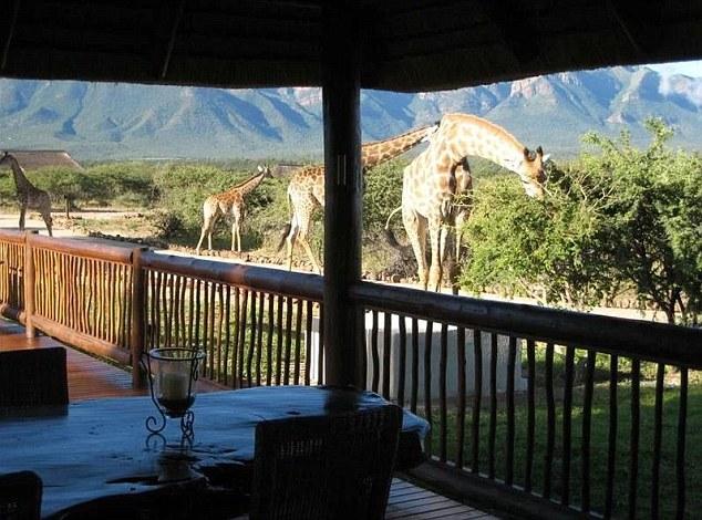 H επίθεση έγινε κοντά στο σπίτι της οικογένειας στο Blyde Wildlife Estate