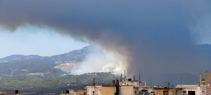 Πυρκαγιά στην Εύβοια/ Φωτογραφία intime news