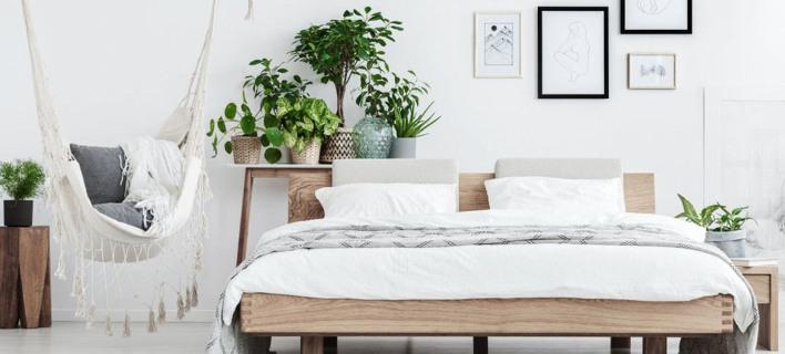 Υπνοδωμάτιο με φυτά /Φωτογραφία: Shutterstock