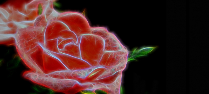 Ελληνίδα επιστήμονας δημιούργησε το πρώτο ηλεκτρονικό τριαντάφυλλο [εικόνες]
