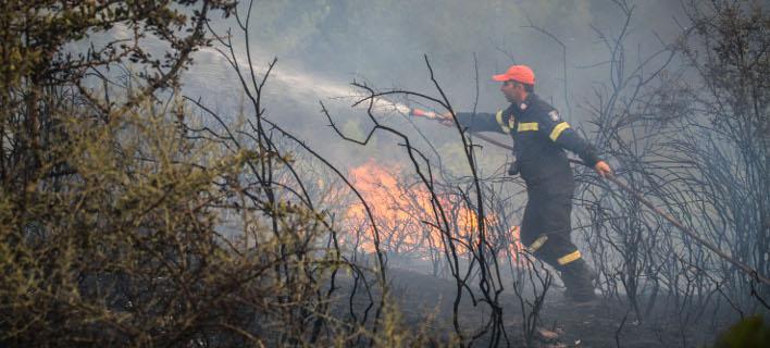 Φωτιά Δαφνιώτισσα(Φωτογραφία: EUROKINISSI/ILIALIVE.GR/ΓΙΑΝΝΗΣ ΣΠΥΡΟΥΝΗΣ)