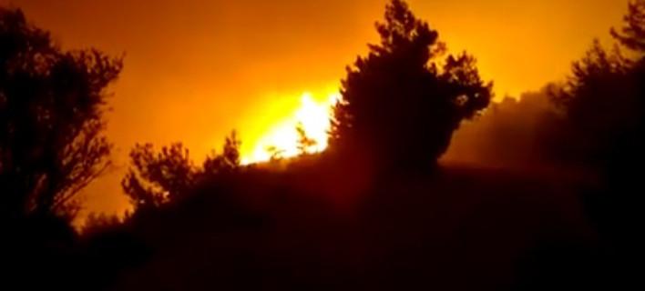 Κάτοικοι χωριού της Χίου καταθέτουν μήνυση -Μετά τη φωτιά και τον τραυματισμό 3 ατόμων