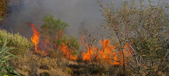 Εξακολουθεί υψηλός ο κίνδυνος εκδήλωσης πυρκαγιάς, φωτογραφία: eurokinissi