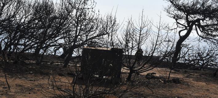 Συνεχώς αυξάνεται ο αριθμός των θυμάτων από τη φονική πυρκαγιά στο Μάτι / Φωτογραφία: Eurokinissi/ΜΠΟΛΑΡΗ ΤΑΤΙΑΝΑ