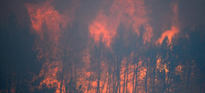 Μάχη με τις φλόγες σε τέσσερα σημεία στην Ελλάδα έδωσαν οι πυροσβέστες / Φωτογραφία: Intimenews - ΧΑΛΚΙΟΠΟΥΛΟΣ ΝΙΚΟΣ (αρχείο)