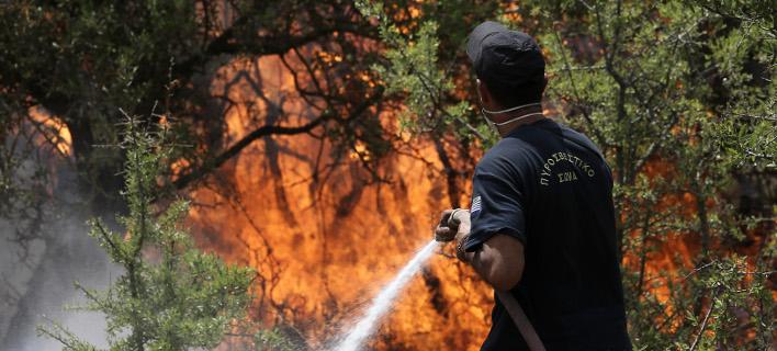 Οδηγός προστασίας από τις πυρκαγιές - Τι να προσέξετε [βίντεο]