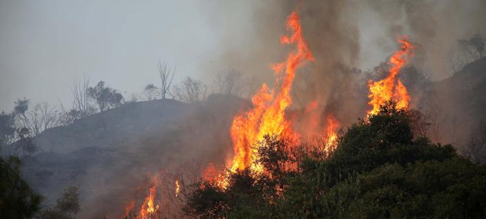 Πυρκαγιά/Φωτογραφία αρχείου: Eurokinissi/ΒΑΣΙΛΗΣ ΒΕΡΒΕΡΙΔΗΣ