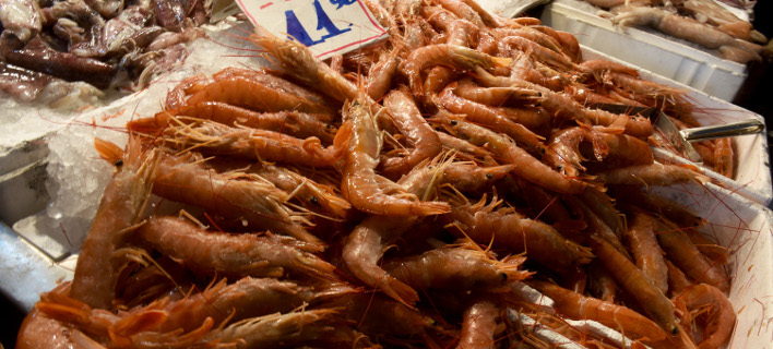 γαρίδες/Φωτογραφία: EUROKINISSI/ΤΑΤΙΑΝΑ ΜΠΟΛΑΡΗ