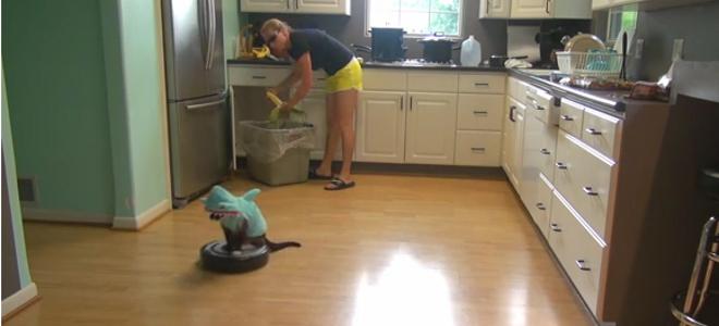Το «παρανοϊκό» βίντεο που σαρώνει το youtube: Γάτα με στολή καρχαρία καθαρίζει τ