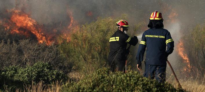 Από τη χθεσινή φωτιά στα Καλύβια Αττικής. ΦΩΤΟΓΡΑΦΙΑ: INTIME NEWS /ΛΙΑΚΟΣ ΓΙΑΝΝΗΣ