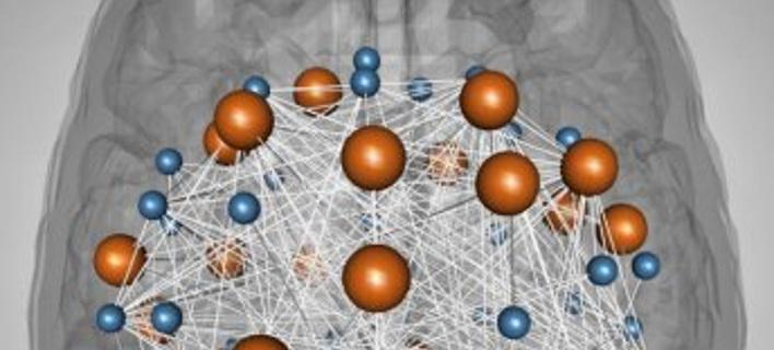 Ανακαλύφθηκαν για πρώτη φορά δύο γονιδιακά δίκτυα νοημοσύνης στον εγκέφαλο