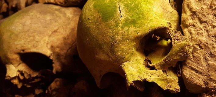 Νέες ανασκαφές για απολιθώματα Γκρεκοπίθηκου [εικόνα]