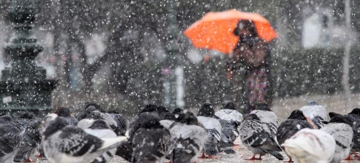 Μοναδικές εικόνες από το πέρασμα του χιονιά / Φωτογραφία: InTime News