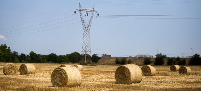 Μειώνεται το τίμημα για χρήση εκτάσεων σε δασικές περιοχές
