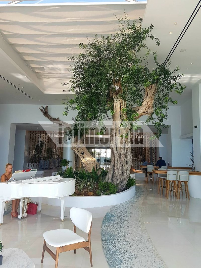 hotel-emir-14_iefimerida